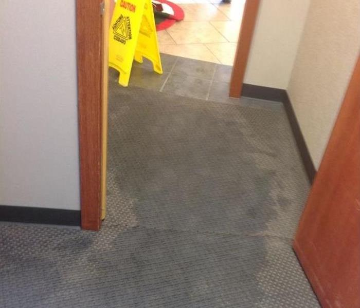 Hallway of a home with gray carpeting showing darker areas that are wet. Yellow caution sign is set up in the area.