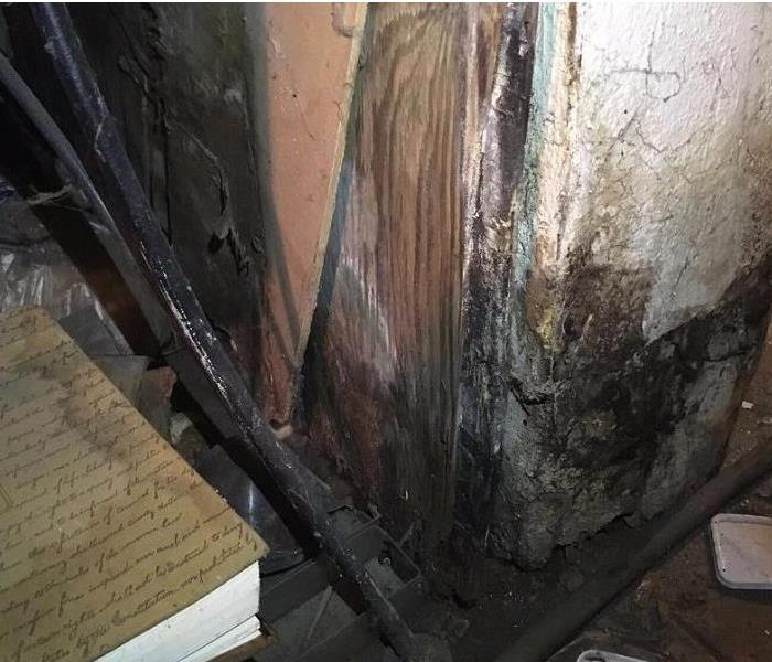 Mold Found In Wyoming, Ohio Home