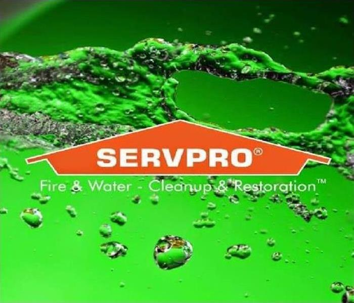 Why SERVPRO SERVPRO of Northwest Cincinnati Professionals are Experts in Commercial Restoration